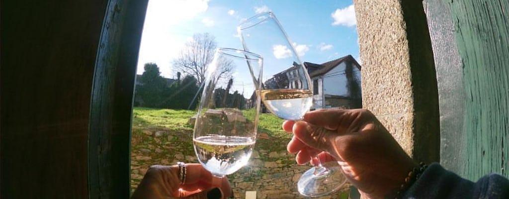 Visita guiada de la región del vino verde con almuerzo y degustaciones desde Oporto.