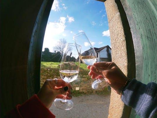Visita guidata della regione del vino verde con pranzo e degustazioni da Porto