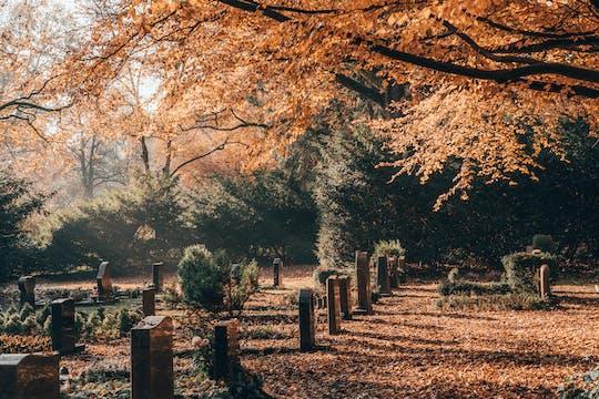 Zwiedzanie z przewodnikiem cmentarza Ohlsdorf w Hamburgu