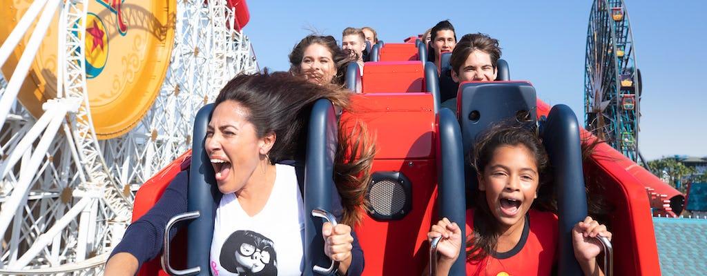 Билеты на 1 парк в день на курорте Disneyland® Resort