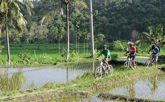 Eastern Bali Classic 4x4 Safari with Cycling Tour