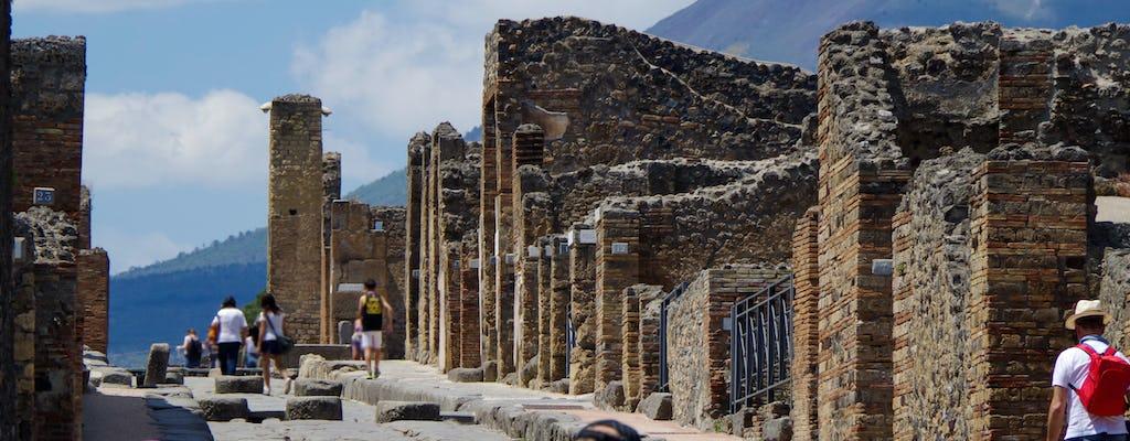 Tour guiado a Pompéia com ingresso sem filas