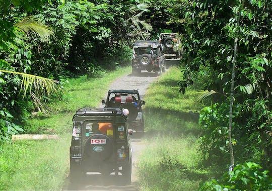Wschodnie Bali wycieczka autem 4x4 z plantacją salaku