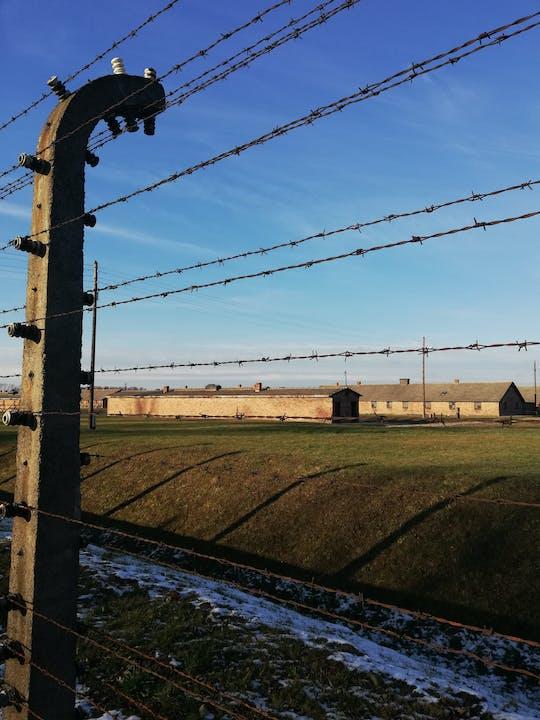 Recorrido de día completo por el museo y el monumento de Auschwitz-Birkenau con la mina de sal de Wieliczka