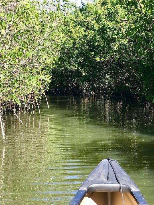 Passeio pela ilha Indian River Lagoon Samson
