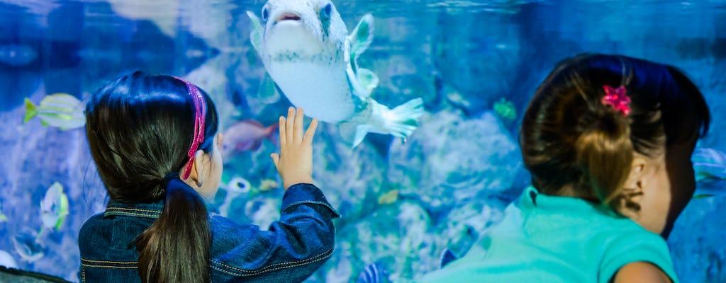 Biglietti SEA LIFE Aquarium San Antonio