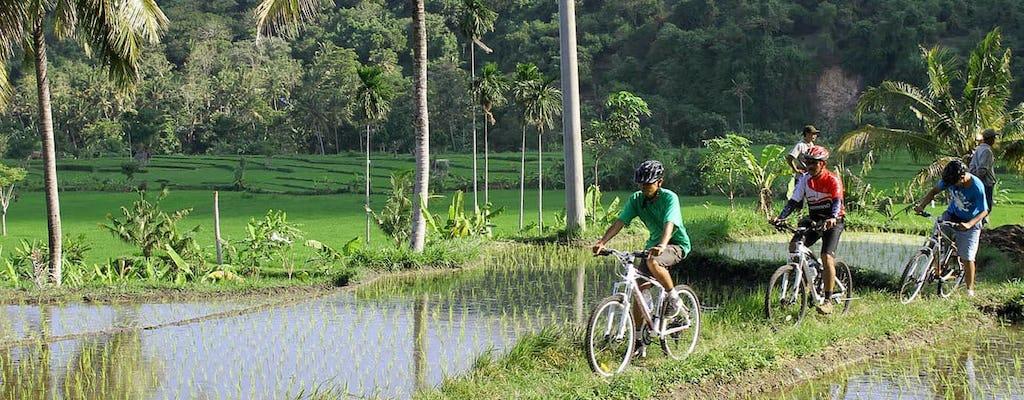 Ost-Bali klassische Geländewagen-Safari mit Fahrradtour