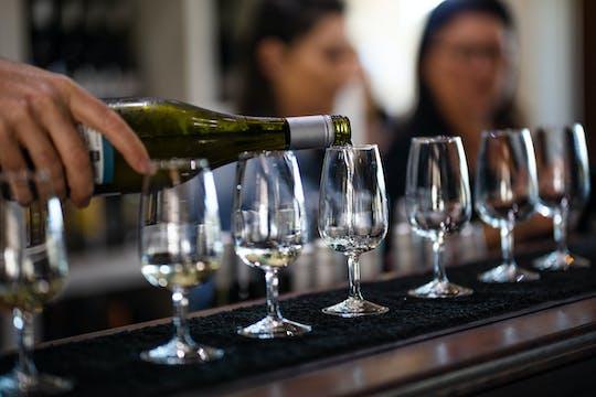 Экскурсия на винодельню Маунт-Тамборин на целый день из Брисбена с обедом