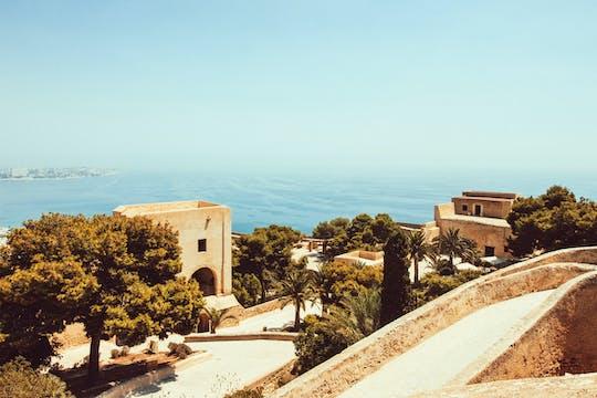 Descubre Málaga en una visita guiada con un local.