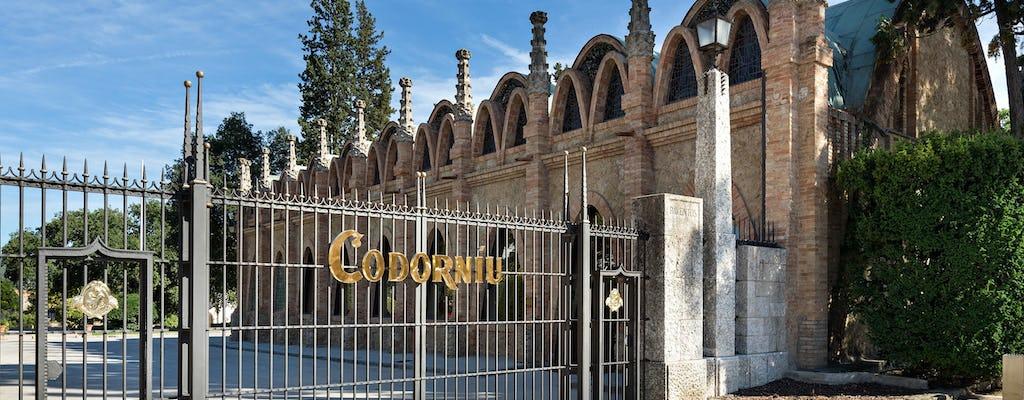 Wycieczka z przewodnikiem po winnicy Codorníu z degustacją wina cava