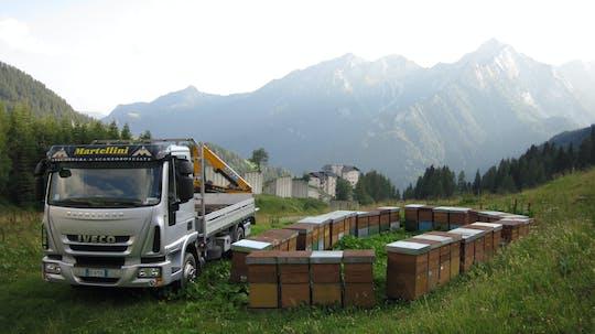 Visita all'Apicoltura Martellini e degustazione di miele