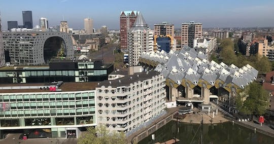 Private Markthal tour and Het Witte Huis rooftop visit