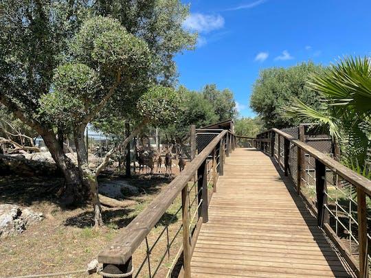 Ogród zoologiczny Lloc de Menorca - tylko bilet
