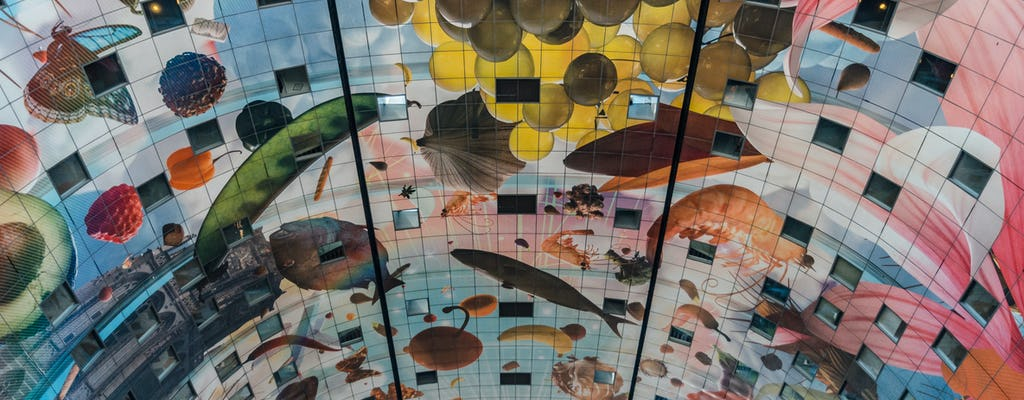 Rotterdam Architecture Visite Guidée à Pied avec un Architecte