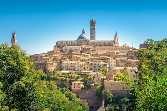 Siena, San Gimignano and Chianti small group tour with Cathedral tickets and lunch