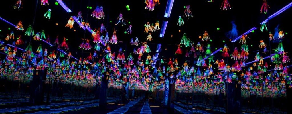 Tickets voor Dark Mansion - 3D Glow In The Dark Museum