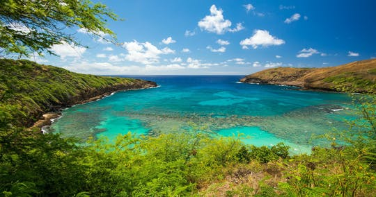 Lindas cores do tour fotográfico do Havaí