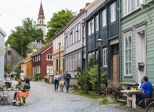 Visite à pied du meilleur de Trondheim