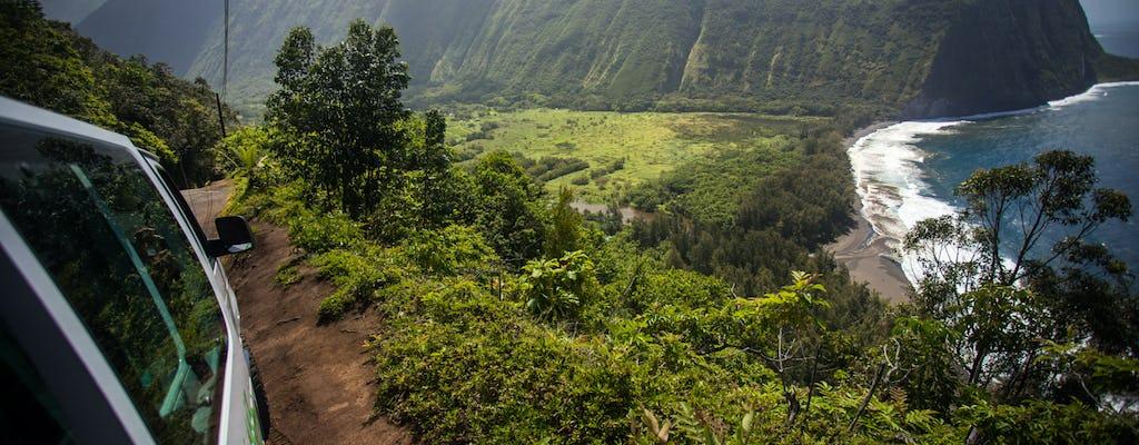 Excursion d'une journée sur la grande île d'Hawaï au départ de Kona