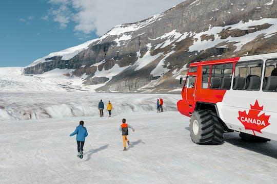 Ganztägige Abenteuertour Columbia Icefield ab Banff
