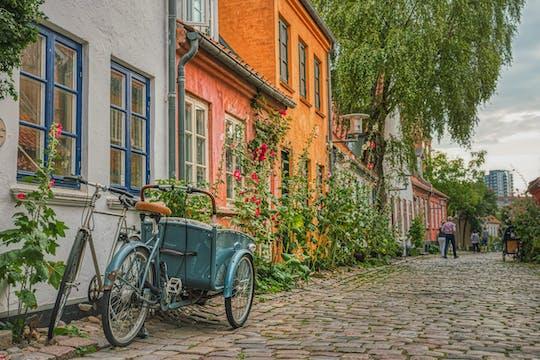 Highlights of Aarhus private walking tour