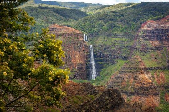 Waimea canyon en Koke'e avontuurlijke tour