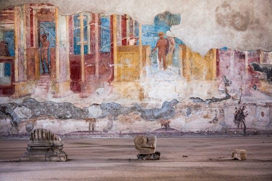 Jednodniowa wycieczka do Pompejów z Neapolu?