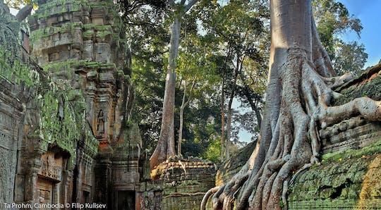 Passeio em grupo pequeno para explorar Angkor Wat ao nascer do sol