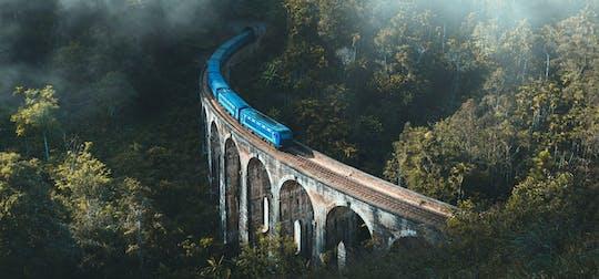 Demodara railway station, Dunhinda Falls, and Nine Arch Bridge tour from Ella
