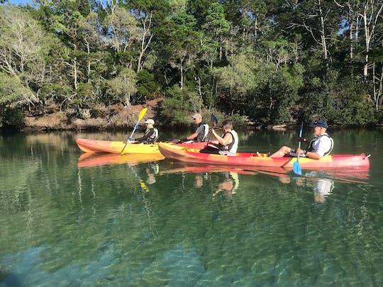 Tour naturalistico in kayak sul fiume Brunswick