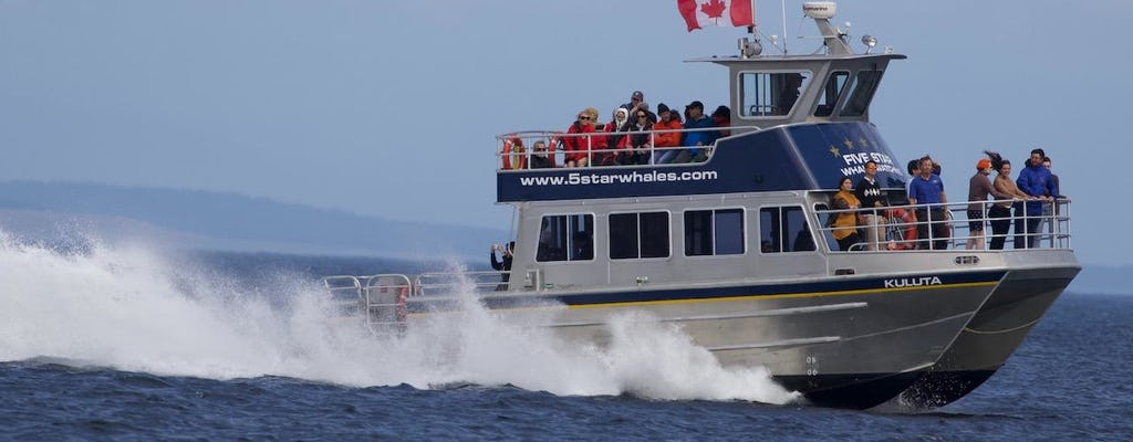 Tour de avistamiento de ballenas en catamarán de 3 horas en Victoria