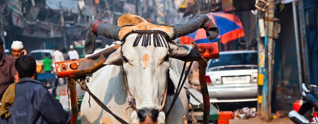 Tour a piedi del patrimonio di un'intera giornata con pranzo e shopping a Delhi