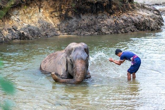 Expérience de soins aux éléphants avec Anda Adventure