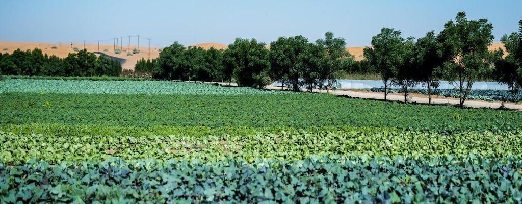 Посетите ферму из Абу - Даби