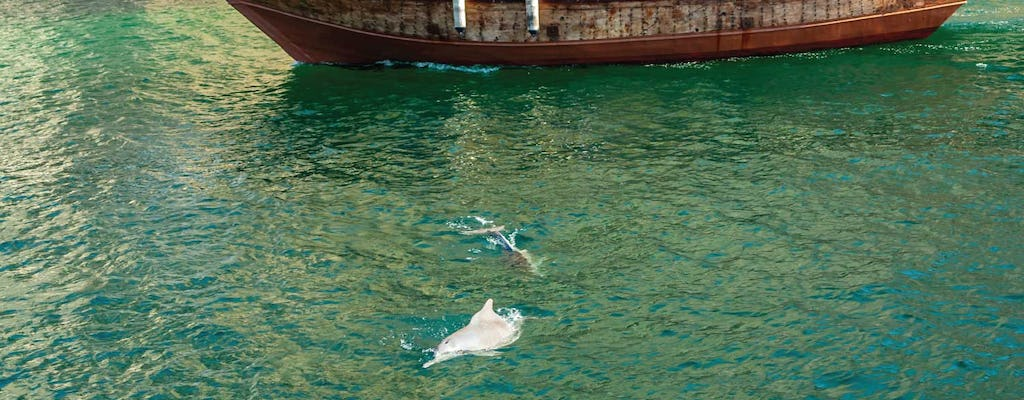 Morning dolphin cruise in Muscat