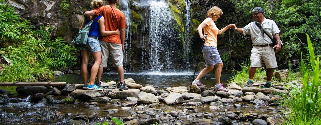 Abenteuertour zu den Kohala-Wasserfällen