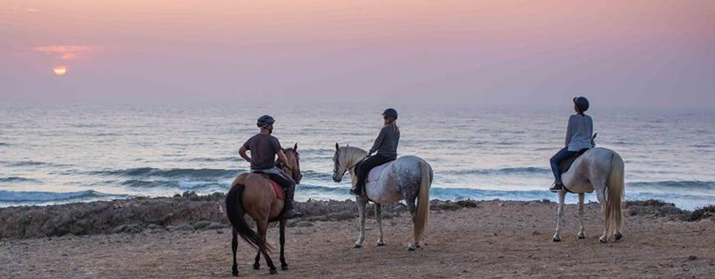 Tour guiado a caballo por la playa de Bordeira al atardecer