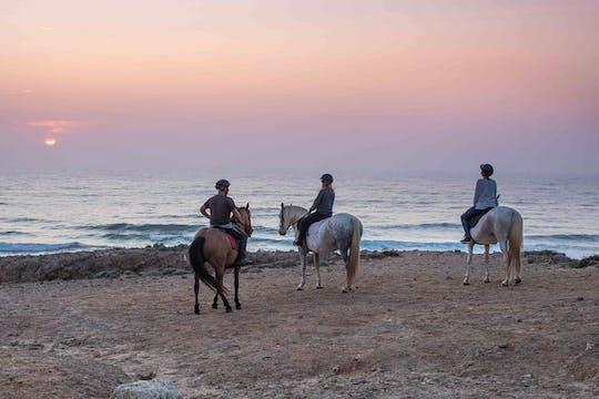 Wycieczka konna na plaży Sunset Bordeira z przewodnikiem