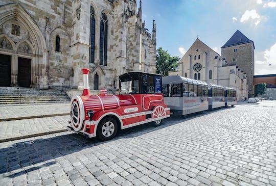 Giro turistico di Ratisbona in treno turistico
