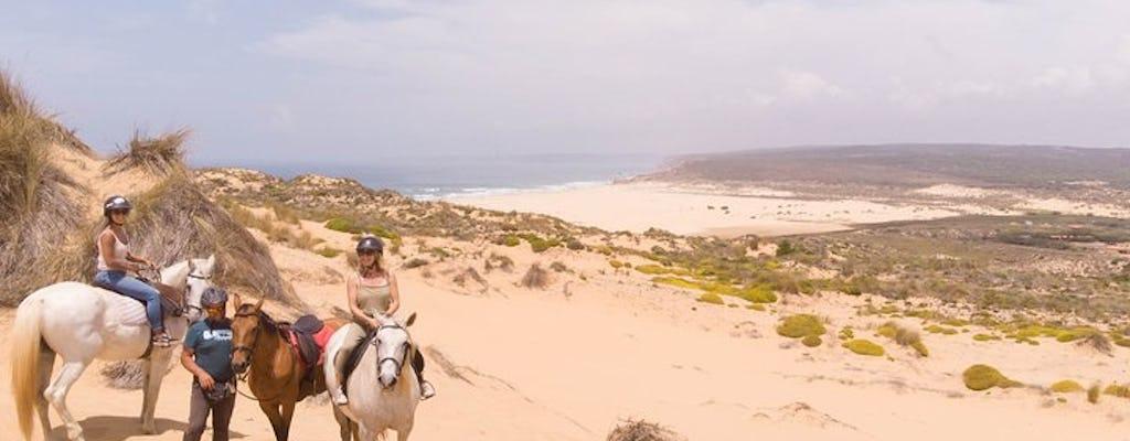 Discover Carrapateira horse riding tour