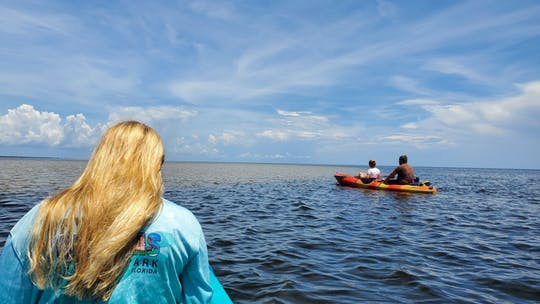 Full-day hiking and paddling tour in Everglades National Park
