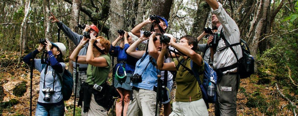 Visite nature de la réserve forestière de Hakalau