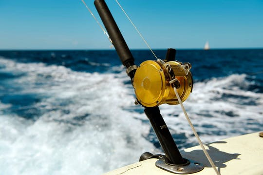 Mahi Mahi Sportfischen-Bootsfahrt