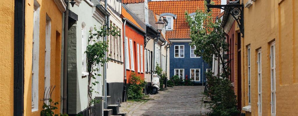 Tour privado a pie por lo mejor de Aalborg
