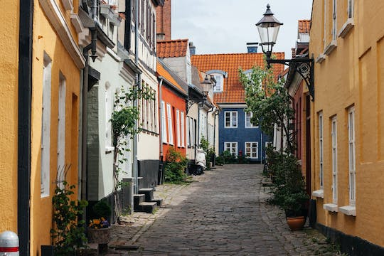 The best of Aalborg private walking tour