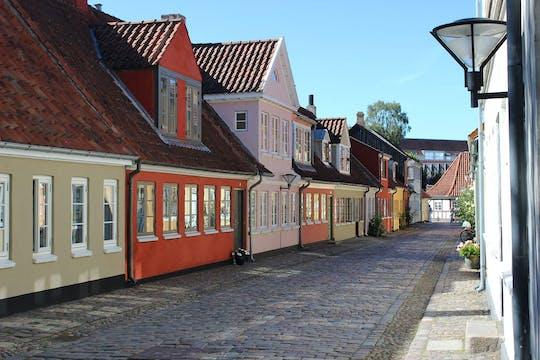 Tour privado a pie por Odense