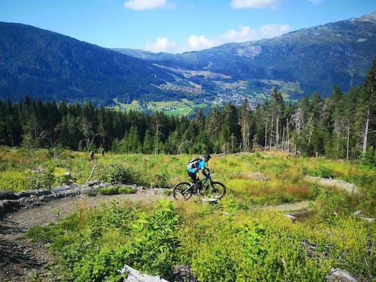Voss River Kanu-, SUP- und Mountainbike-Kombitour