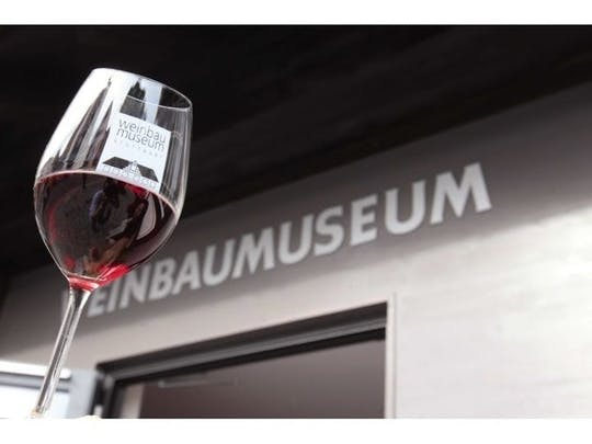 Guided wine tasting in Stuttgart