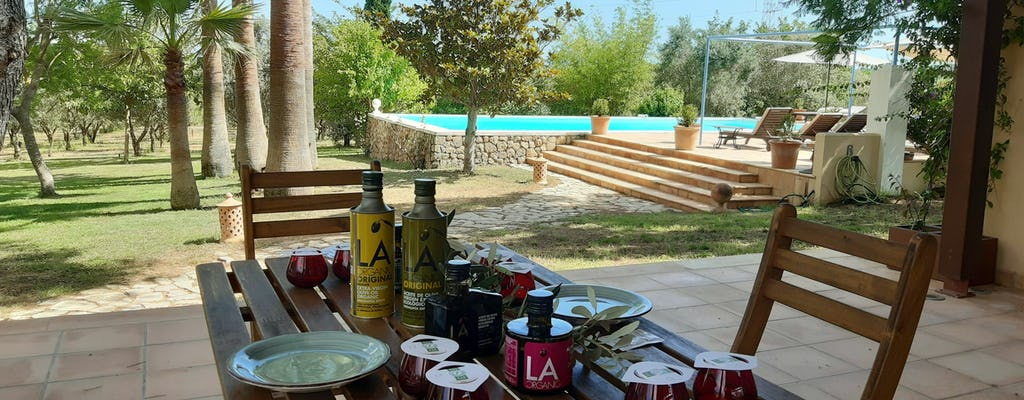 Majorca Olive Oil Tasting Tour