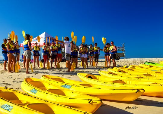 Noosa dolphin view sea kayak and beach 4X4 adventure day tour